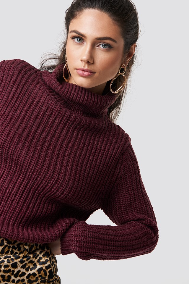 Tinelle rollneck knit Wine Red
